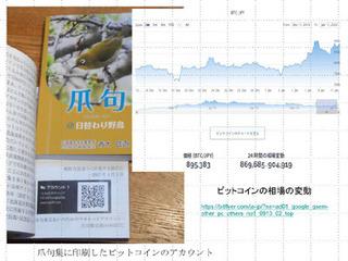 ビットコイン定価爪句集A.jpg